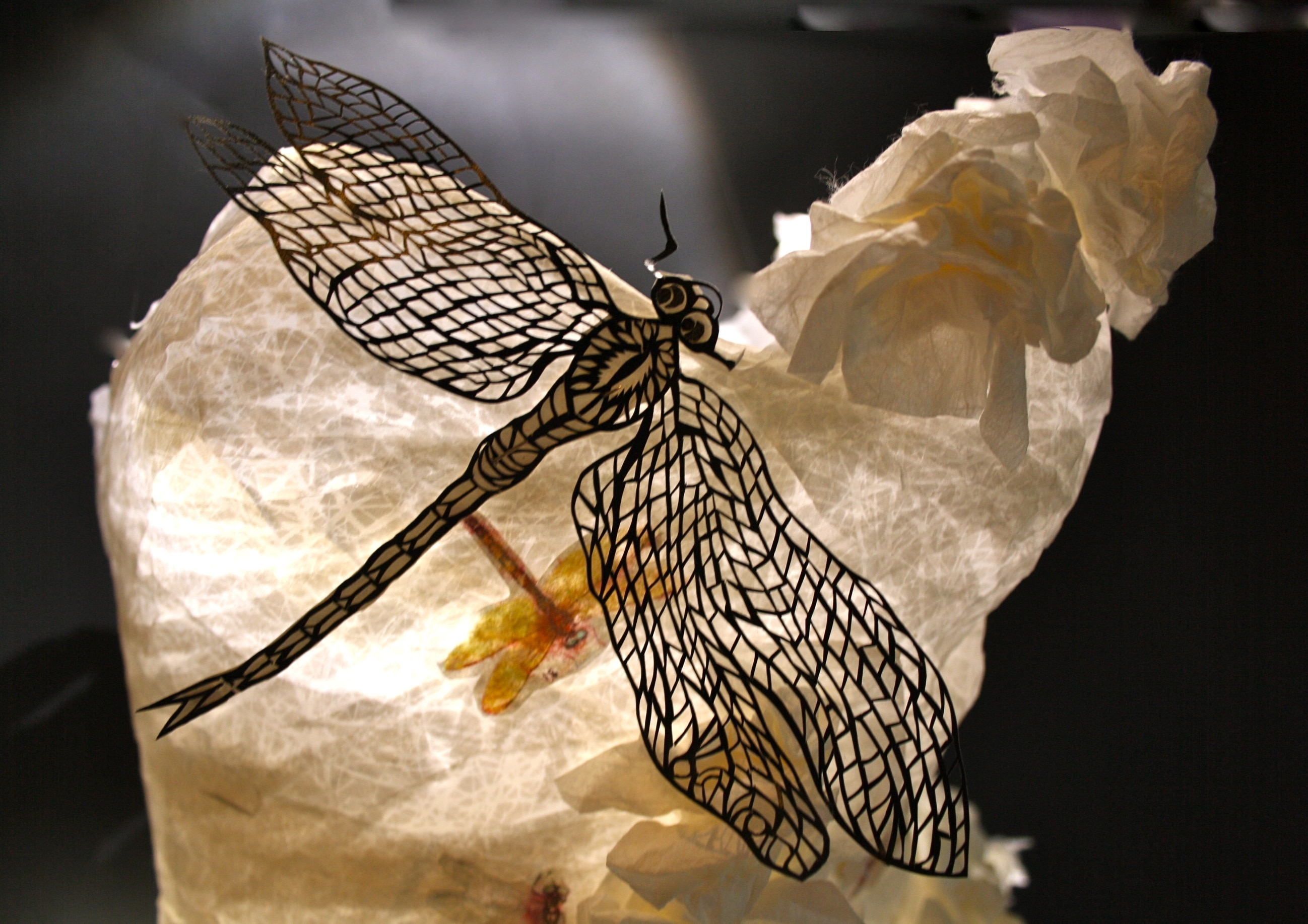 Dragonfly-Dress-2